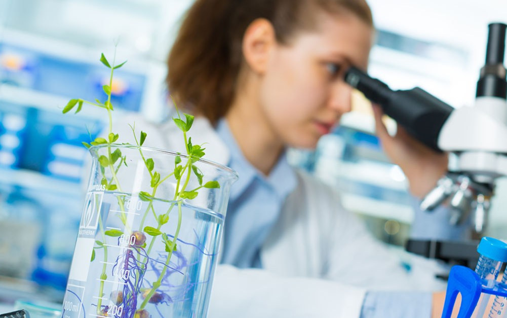 显微镜由哪些部分组成?